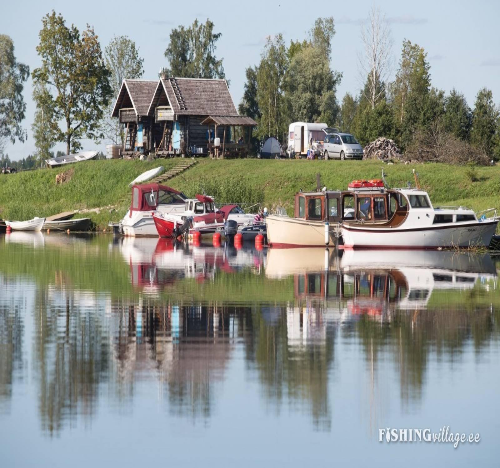 Uus-Sauga 62,Pärnu,Pärnu maakond,Kämping,Uus-Sauga,1010